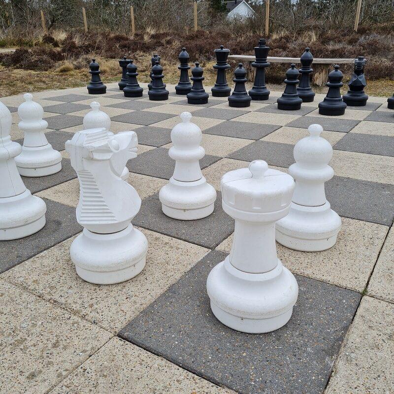 XXXL skak - Et spil uden held og tilfældigheder. Kan du mon vinde?
